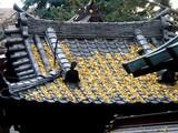 20071208-船橋市宮本・船橋大神宮・お酉様・壱の酉-1427-DSC09150