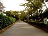 20071020-習志野市・習志野さわやかウォーク-1232-DSC09825