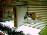 20071215-ららぽーとTOKYO-BAY・Xbox360-1256-DSC09637