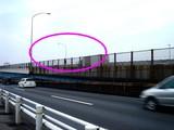 20071229-船橋市日の出・首都高湾岸線・交通事故-1602-DSC02039