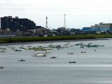 20070901-市川市・江戸川放水路・ハゼ釣り-1231-DSC01331