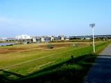 20051104-市川市・江戸川放水路-1348-DSC05149