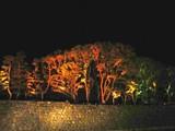 20071220-東京都丸の内・光都東京・ライトピア-1857-TS3C0096