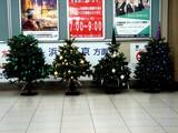 20071128-船橋市浜町2・IKEA船橋・クリスマス-2003-DSC07623
