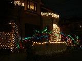 20071221-浦安市舞浜・住宅街・クリスマスイルミネーション・電飾-1937-DSC00267