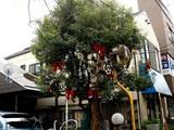 20071201-習志野市谷津遊路商店街・クリスマス-1116-DSC07839
