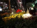 20071228-東京都・丸の内・イルミネーション-1816-DSC01922