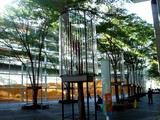 20071113-東京国際フォーラム・イルミネーション-0932-DSC04343