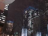 20071228-東京都・丸の内・イルミネーション-1827-DSC01943