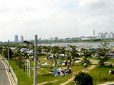 20080615-市川市妙典・江戸川放水路・ディキャンプ-1357-DSC07099T