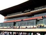 20050923-船橋市若松1・船橋競馬場-1044-DSCF2546