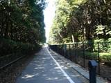 20080322-習志野市秋津3・秋津公園・街路灯-1259-DSC04055