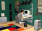 20080628-ザシムズ2・IKEAホームパック-340