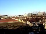 20050122-船橋市若松1・船橋競馬場-1519-DSC04475