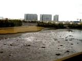 20080504-船橋市・グランドホライゾントーキョーベイ-1257-DSC00072