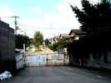 20060903-船橋市若松1・船橋競馬場-1225-DSC02260