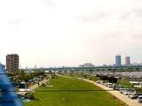 20080615-市川市妙典・江戸川放水路・ディキャンプ-1357-DSC07098U