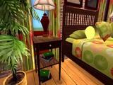 20080628-ザシムズ2・IKEAホームパック-250