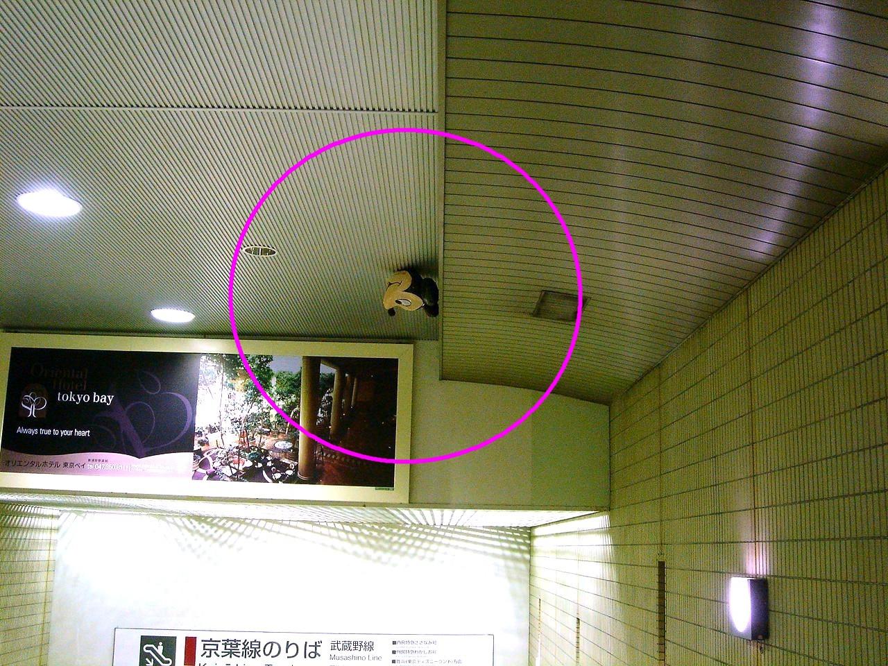 http://livedoor.blogimg.jp/vivit2008/imgs/d/0/d081da4c.JPG