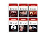 20080630-ヨーロッパ・タバコの有害性への警告-020