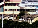20060903-船橋市若松1・船橋競馬場-0938-DSC01938T