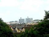 20060903-船橋市若松1・船橋競馬場-1225-DSC02257T