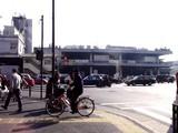 20081230-東京都中央卸売市場・築地市場-1121-DSC03069