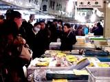 20081230-東京都中央卸売市場・築地市場-1057-DSC03025