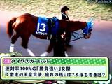 20081228-船橋市・中山競馬場・有馬記念-1446-DSC06369