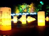 20081219-東京都・光都東京ライトピア-2049-DSC04263