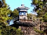 20081231-船橋市宮本・船橋大神宮・大晦日-1148-DSC07641