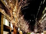 20081219-東京都・光都東京ライトピア-2032-DSC04229