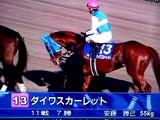 20081228-船橋市・中山競馬場・有馬記念-1504-DSC06401