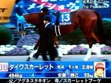 20081228-船橋市・中山競馬場・有馬記念-1445-DSC06366