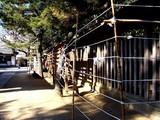 20081231-船橋市宮本・船橋大神宮・大晦日-1146-DSC07630