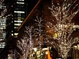 20081219-東京都・光都東京ライトピア-2112-DSC04328