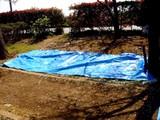 20090411_船橋市_海老川_桜_さくら_1009_DSC02277
