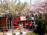 20090411_船橋市_海老川_桜_さくら_1008_DSC02272