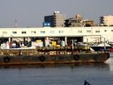 20080730-船橋市・船橋港親水公園花火大会-0754-DSC03304