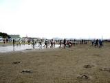 20090510_ふなばし三番瀬海浜公園_潮干狩り_1036_DSC06236