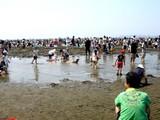 20090510_ふなばし三番瀬海浜公園_潮干狩り_1041_DSC06255
