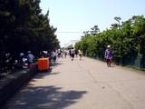 20090510_ふなばし三番瀬海浜公園_潮干狩り_1120_DSC06405
