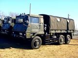 20090111_船橋市習志野3_第1空挺団降下訓練始め_1012_DSC08741