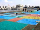 20080730-船橋市・船橋港親水公園花火大会-0756-DSC03312