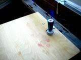 20090117_IKEA船橋_生クリスマスツリー_返却_1626_DSC00086