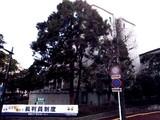 20080113-,千葉市中央区中央4_千葉地方裁判所本庁_030