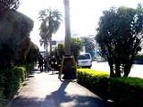 20090327_三井ガーデンホテルズららぽーと_新入社員_0850_DSC07839T