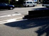 20090410_船橋市浜町2_ららぽーとTOKYO-BAY_桜_DSC02060