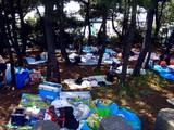 20090510_ふなばし三番瀬海浜公園_潮干狩り_1119_DSC06402