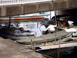 20090405_船橋市湊町_船橋海洋少年団ヨット部_1045_DSC00569